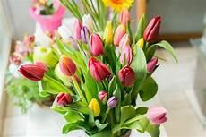 fiori a casa allestimenti floreali casa dei fiori ciri 232