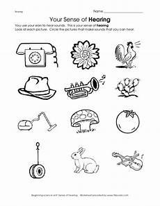the 5 senses worksheets for kindergarten 12569 sense of sight worksheet kindergarten worksheets 5 senses worksheet five senses worksheet