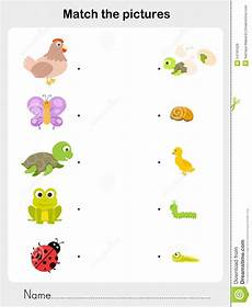 animal cycle worksheets 13938 match animal worksheet for education stock vector illustration of pupa find 54191629