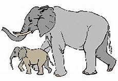 Ausmalbilder Indischer Elefant Elefanten Ausmalbilder Kostenlos