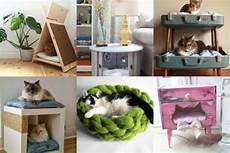 H 252 Bsche Katzenbettchen Zum Selbermachen Nettetipps De
