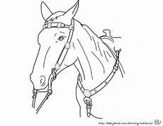 Pferde Bilder Ausmalbilder Ausmalbilder Pferdekopf Kinderbilder