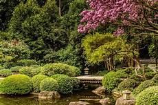 Garden Brisbane brisbane botanic gardens toowong australia the