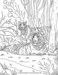 Malvorlagen Tiger Zum Ausdrucken Malvorlage Tiger Gratis Malvorlagen Zum In