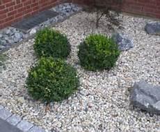 Beet Mit Kies Gestalten Kies Und Steine Im Garten