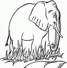 free printable elephant coloring pages for