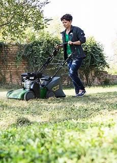 Befreie Deinen Rasen Vom Unkraut Gartengeheimnis At