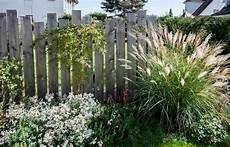 Natürlicher Sichtschutz Im Garten - 78 best sichtschutz im garten images on