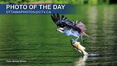 Of The Day - photos of the day july 2017 ctv ottawa news
