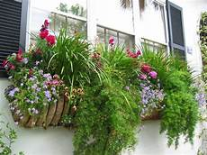 balkonkästen bepflanzen ideen ewa in the garden 13 best window box ideas