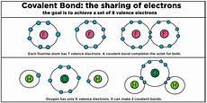 covalent bonding biology definition role expii