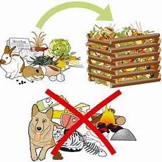 was darf auf den kompost kompost das schwarze gold des g 228 rtners kompost