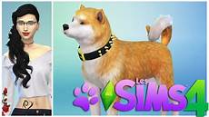 sims 4 chiens et chats les animaux de ma v 233 to 1
