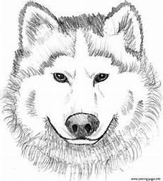 Malvorlagen Wolf Craft Wolf Ausmalbild Ausmalbilder F 252 R Kinder Malen