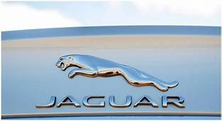Jaguar Logo Meaning And History Symbol