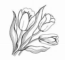 Ausmalbilder Blumen Tulpen Ausmalbilder Blumen Malvorlagen Ausdrucken 6