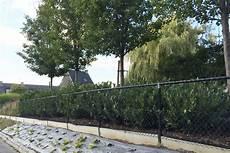 cloture de jardin prix d une cloture r 233 sum 233 des prix d une cloture