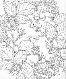 nature colouring pages to print 16387 harmony of nature coloring book pg 5 color pages stencils templates patterns