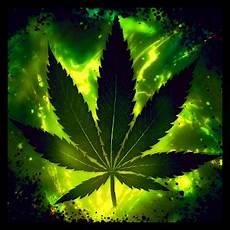 marijuana live wallpaper pro apk apk pro mx player pro apk one