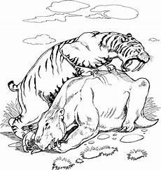 Malvorlagen Tiger Motor Saber Tooth Tiger Coloring Page Coloring Home