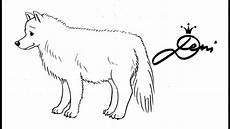 wolf zeichnen polarwolf zeichnung how to draw a wolf