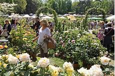 di masino fiori apgi a masino per l evento tre giorni per il giardino apgi