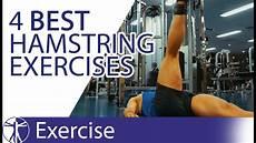 the 4 best hamstring exercises hamstring training youtube