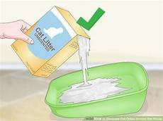 Eliminate Bathroom Urine Odor by 3 Ways To Eliminate Cat Odors Around The House Wikihow