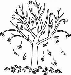 autumn fall tree coloring page tree fall
