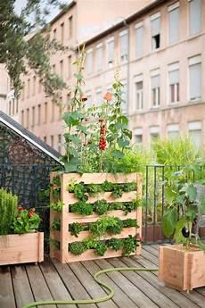 jardin potager sur terrasse faire un potager sur une terrasse c 244 t 233 maison