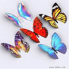 Animated 3drt Butterfly Cgtrader