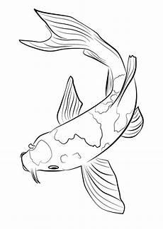 ein karpfen oder auch koi als grafik koi kunst fische