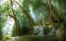 Water From The Mountains Meratus Seni Budaya