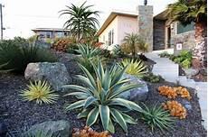 Cactus Et Plantes Grasses Ext 233 Rieur Pour Un Jardin Facile
