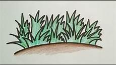 Gambar Kartun Rumput Laut Gambar Gokil