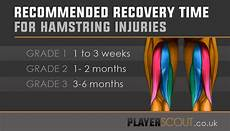 exercises for grade 1 hamstring football hamstring injury the ultimate guide playerscout 174