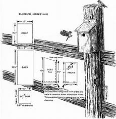 bluebird house plans garden girl s chi simple plan for eastern bluebird house
