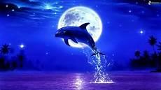 Malvorlagen Unterwasser Tiere Lustig Delfines Saltando 2c Mes 2c Llena 190705 Jpg 1920
