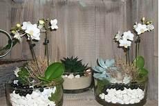 orchideen deko ideen wei 223 e geschm 252 ckte orchideen orchideen orchideen orchideen pflege und wei 223 e orchideen