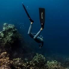 freedive south east asia philippines aida courses