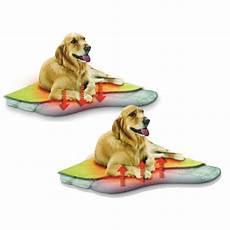 tapis chauffant chien exterieur tapis auto chauffant tapis pour chien et chat oster wanimo