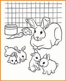 Ausmalbilder Hasen Baby Ausmalbilder Hasenfamilie Rooms Project