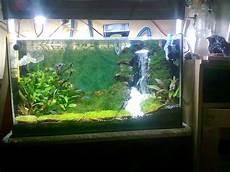 Ardy Cianjur Bogor Cara Membuat Air Terjun Aquascape Aquarium