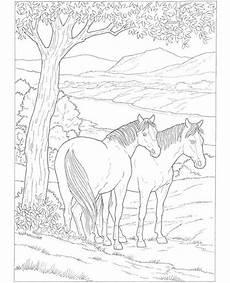 Ostwind Malvorlagen Novel 42 Besten Horses Bilder Auf Pferde Malb 252 Cher