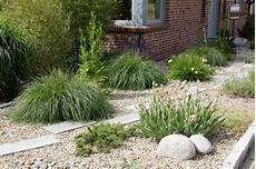 kiesbeet gestaltung fotos kiesbeet anlegen suche gartenwelt garden