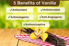 Extract Benefits by The Cancer Fighting Benefits Of Vanilla Extract No One