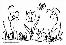 Ausmalbild Schmetterling Wiese Schmetterling Blumenwiese Malvorlage Coloring And