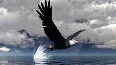 iphone black eagle wallpaper hd eagles hd wallpapers