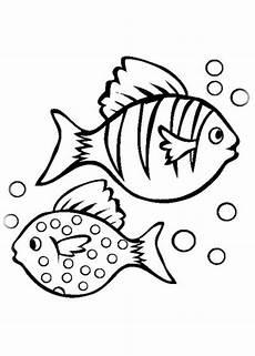 malvorlagen fische gratis ausmalbilder zum ausdrucken gratis malvorlagen fische 1