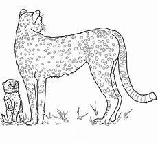ausmalbilder leopard ausdrucken kostenlose malvorlagen ideen